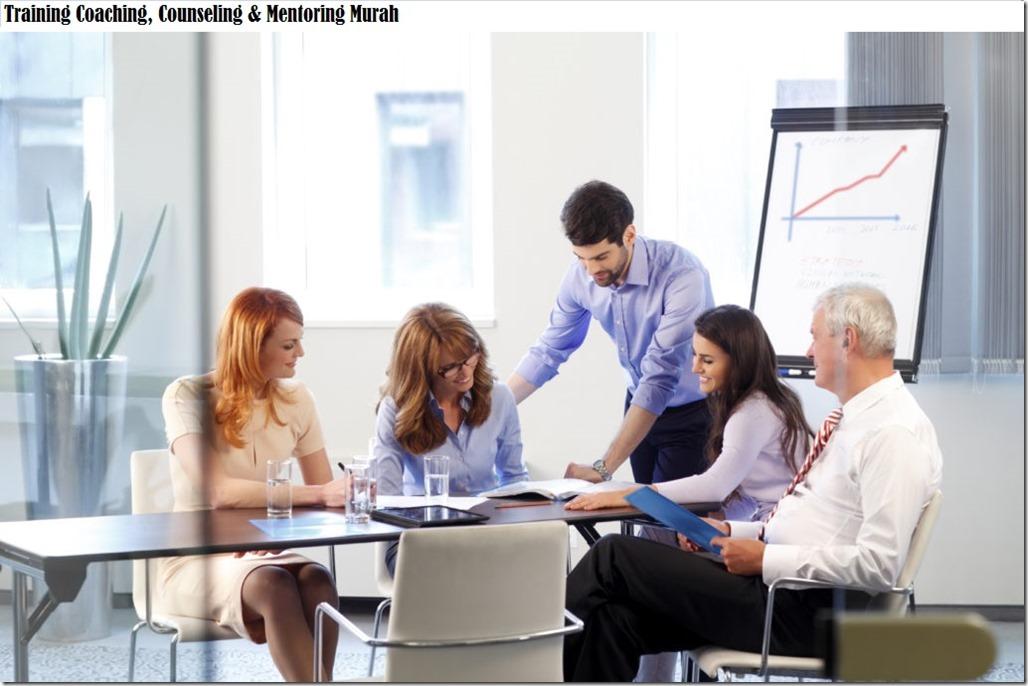 training pengenalan coaching, counseling & mentoring murah