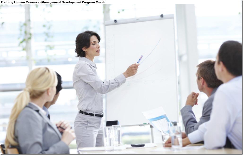 training manajemen strategis dan struktur organisasi murah